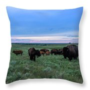 Home On The Range Throw Pillow
