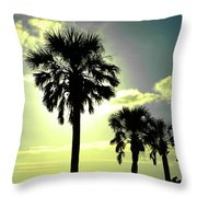 Honeymoon Island Sunset Throw Pillow