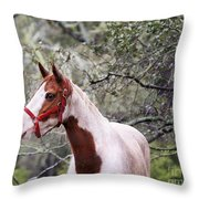 Horse 019 Throw Pillow