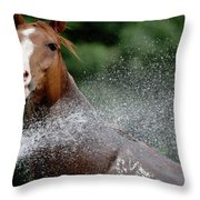 Horse Bath II Throw Pillow
