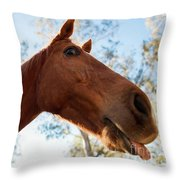 Horse In The Paddock Throw Pillow