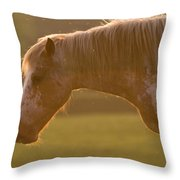 Horses In The Evening Light Throw Pillow