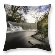 Horseshoe Falls Throw Pillow