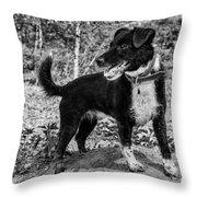 Hound On A Mound Throw Pillow