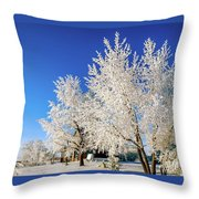 House On The Outskirts 2 Throw Pillow