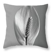 Houseplant  Spathiphyllum Floribundum  Peace Lily Throw Pillow
