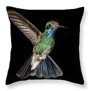 Hovering Hummer Throw Pillow