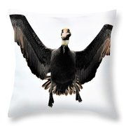 Hovering Throw Pillow