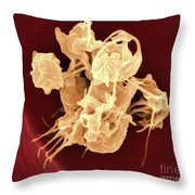 Human Thrombocytes Platelets, Sem Throw Pillow