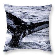 Humpback Fluke Throw Pillow