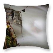Hung Up Throw Pillow