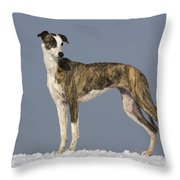 Hungarian Greyhound Throw Pillow