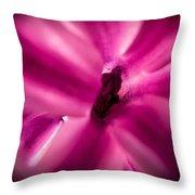 Hyacinth Throw Pillow