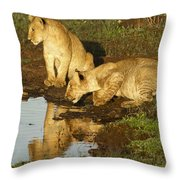 I Can See Myself Throw Pillow