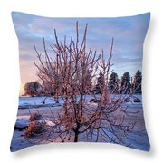 Icy Tree At Sunset  Throw Pillow