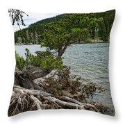Idaho Lake Throw Pillow