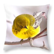 Img_0001 - Pine Warbler Throw Pillow