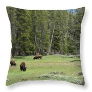In A Field Throw Pillow