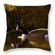 In The Warm Evening Sunlight Throw Pillow