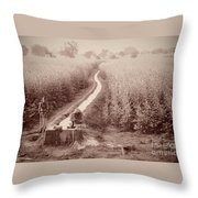 India Laundry In Canal Throw Pillow