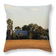 Indiana Farmland  Throw Pillow
