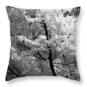 Infrared Tree Pic Throw Pillow