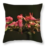 Insect. Throw Pillow