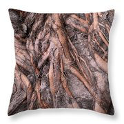 Intricate Root System Throw Pillow