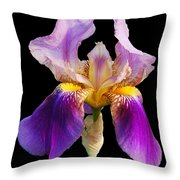 Iris 5 Throw Pillow