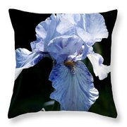 Iris Photograph Throw Pillow