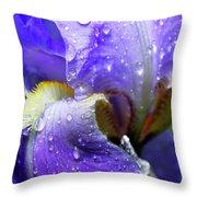 Iris With Raindrops Throw Pillow