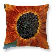 Isabella Sun Throw Pillow