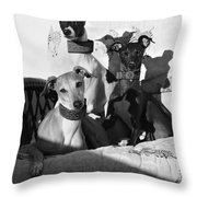 Italian Greyhounds In Black And White Throw Pillow