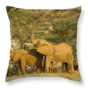 It's A Stretch Throw Pillow