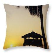 Ixtapa Sunset Throw Pillow