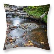 Jacob's Creek Rapids Throw Pillow