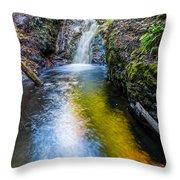 Jacob's Falls Throw Pillow