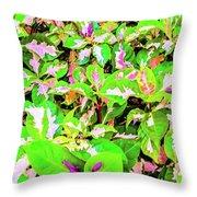 Jamaican Croton Throw Pillow