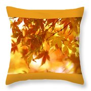 Japanese Maple In Fall Throw Pillow