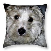 Jasper 0049 Throw Pillow