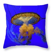 Jellyfish At California Academy Of Sciences In San Francisco, California Throw Pillow