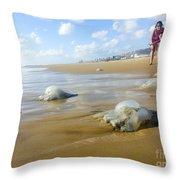 Jellyfish On The Beach  Throw Pillow