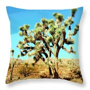 Joshua Trees Throw Pillow