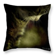 Just Sleep Throw Pillow
