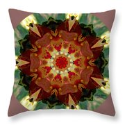 Kaleidoscope - Warm And Cool Colors Throw Pillow by Deleas Kilgore