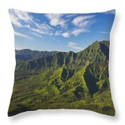 Kauai Aerial Throw Pillow