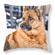 Kayla 4 Throw Pillow