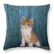 Kitten On A Greek Island Throw Pillow