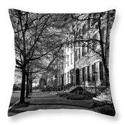 La Fayette Park - Washington D C Throw Pillow