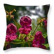 Lady Slipper Orchid Dan146 Throw Pillow
